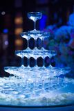 Beautiful glass of champagne at the wedding celebrat royalty free stock photos