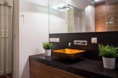 Beautiful glass washbasin Stock Images