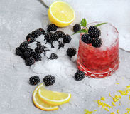 A beautiful glasses of alcoholic berry cocktails. A fancy shot with blackberries, mint and lemons on a white background. Stock Images