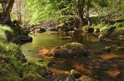 Beautiful glencree river flowing through magical landscape. Walking the wicklow way through the glencree valley is beautiful stock photos