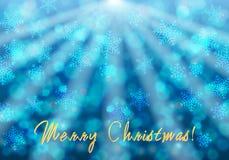Beautiful glittering snowflakes Stock Photos