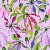 Beautiful gloriosa lily flowers with climbing leaves on pink background. Seamless floral pattern. Watercolor painting. Hand painted illustration. Fabric Stock Photos
