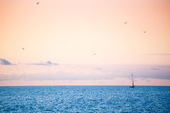 Beautiful gold sunset with a sailboat sailing. Sea. Yacht. Stock Photography
