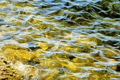 Beautiful gold to fading green waters with soft ripples on surface Stock Image