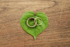 Beautiful gold wedding rings on green leaf  with wood background. Stock Photo