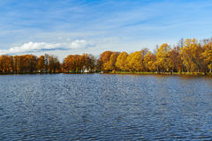 Beautiful golden autumn in the city park. Royalty Free Stock Photo