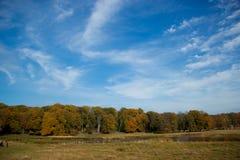 Beautiful golden autumn Stock Photography