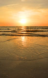 Beautiful golden beach at sunset. Royalty Free Stock Images