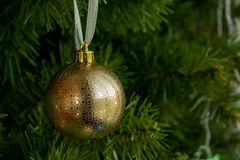 Beautiful Golden christmas ball hanging on the christmas tree. Selective focus. New Year, copy space stock photos