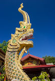 Beautiful golden dragon Royalty Free Stock Photo