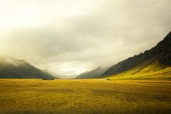 Beautiful golden field with amazing cloudy background royalty free stock image