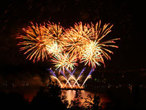 Beautiful golden fireworks  Stock Photography