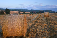 Beautiful golden hour hay bales sunset landscape Stock Photos