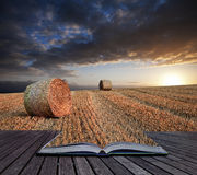 Beautiful golden hour hay bales sunset landscape Creative concep Stock Photo