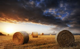 Beautiful golden hour hay bales sunset landscape Royalty Free Stock Photography