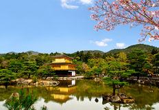 Beautiful golden pavilion with sakura branch 1 Stock Images