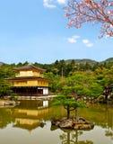 Beautiful golden pavilion with sakura branch 2 Royalty Free Stock Images
