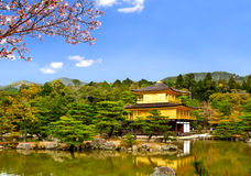 Beautiful golden pavilion with sakura branch 3 Stock Photos
