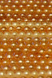 Beautiful golden pearl. Beautiful golden pearl necklace closeup Stock Images