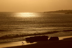 Golden sea. Beautiful golden sea at sunset Royalty Free Stock Photography