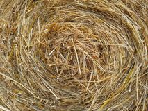 Golden spiral hay texture. The beautiful golden spiral hay with different straw shades stock photography