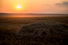 A beautiful Golden Sunset on a hay field royalty free stock image