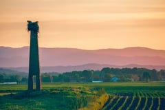 Beautiful Golden Sunset over the landmark and bird nest Stock Photo