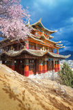 Beautiful golden temple of tibet style with cherry blossoms. In cloudy day  at shangri la town , Yunnan , China Royalty Free Stock Photos