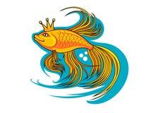 Beautiful goldfish Royalty Free Stock Images