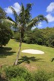 Beautiful golf course at the Constance Lemuria Royalty Free Stock Images