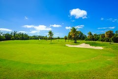 Beautiful golf course. Landscape in Miami Stock Photos
