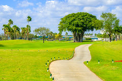 Beautiful golf course. Landscape in Miami Royalty Free Stock Photo