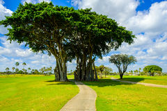Beautiful golf course Royalty Free Stock Image