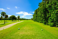 Beautiful golf course Stock Images
