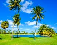 Beautiful golf course Stock Photos