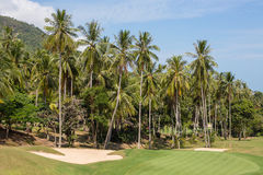 Beautiful golf course and palm tree. Island Koh Samui, Thailand Royalty Free Stock Photos