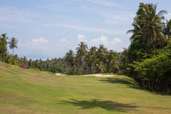 Beautiful golf course and palm tree. Island Koh Samui, Thailand Stock Images