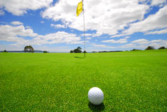 Beautiful Golf Green Stock Photography