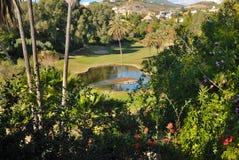 Beautiful golf lake royalty free stock photo