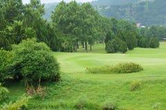Beautiful golf park Stock Images