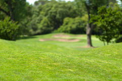 Beautiful Golf Park Landscape Stock Image
