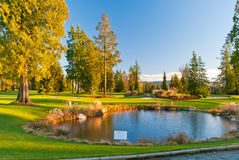 Beautiful golf place. Royalty Free Stock Photography