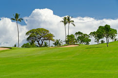 Beautiful golf place. Royalty Free Stock Images