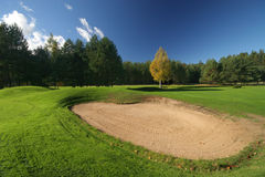 Beautiful golf playground. On sunny day Stock Photos