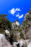Beautiful gorge in Japan Stock Image