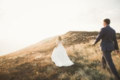 Beautiful gorgeous bride posing to groom and having fun, luxury ceremony at mountains with amazing view, space for text. Wedding couple Stock Images