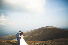 Beautiful gorgeous bride posing to groom and having fun, luxury ceremony at mountains with amazing view, space for text Stock Photography