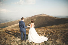 Beautiful gorgeous bride posing to groom and having fun, luxury ceremony at mountains with amazing view, space for text Stock Photos