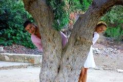 Beautiful gorgeous couple on the tree of love cedar, on cyprus stock photos