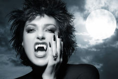 Beautiful Gothic Girl. Female werewolf stock photo